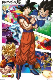 Dragon Ball Super English Subbed Episodes Online Free
